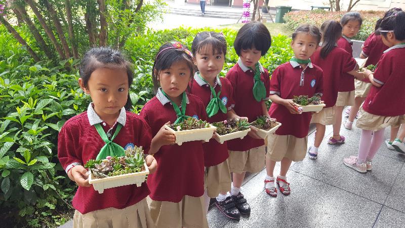 [青浦] 沈巷小学: 开展多肉植物diy活动