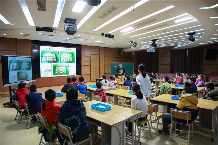 区教育学院开展中小学信息技术与课堂教学深