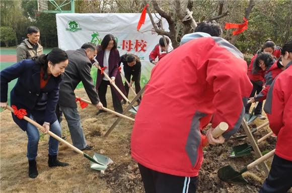[浦东]杨思高级中学:传情母校植根植树高中的前三图片