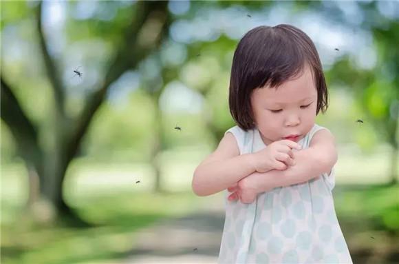 这几个预防蚊虫叮咬的小窍门,帮助宝宝轻松过夏天!