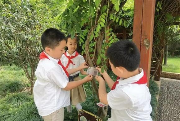 """广中路小学:""""自然环境+社会文化+自我成长""""三大生态课程 铺就学生个性化发展之路"""